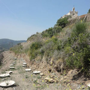A-fantastic-Waterboxx-plantation-on-the-mountain-with-centennial-old-church-of-Sant-Boi-de-Llobregat-near-Barcelona
